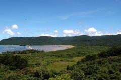 西表研究施設屋上から望む船浦湾のマングローブ林