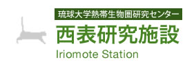 Iriomote Station